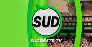 <p> Sudoeste TV</p>