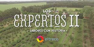 <p> Los Expertos</p>
