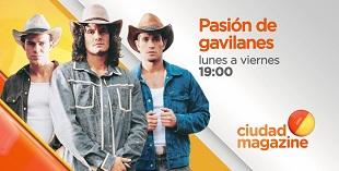 <p> Pasi&oacute;n de Gavilanes</p>