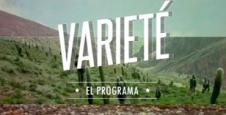 <p> Variet&eacute;</p>